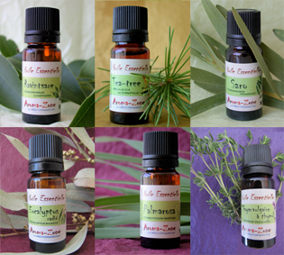 aromath rapie familiale se prot ger des infections avec les huiles essentielles le blog. Black Bedroom Furniture Sets. Home Design Ideas