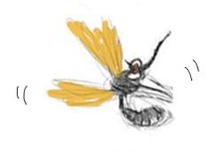 comment se prot ger des moustiques le blog aroma zone aromath rapie et cosm tique maison. Black Bedroom Furniture Sets. Home Design Ideas