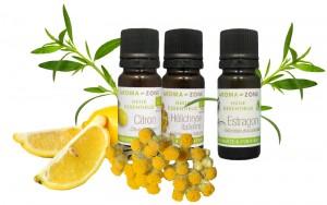 citron BIO- Estragon-Helichryse